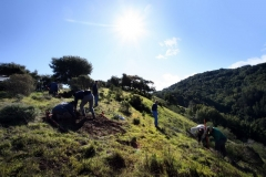 bald-hill-landscape-with-group-at-work