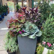 Sloat Garden Center